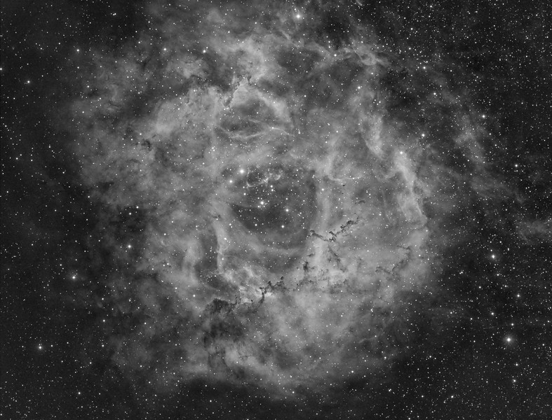 rosette20nebula20proc2-edit-2-l